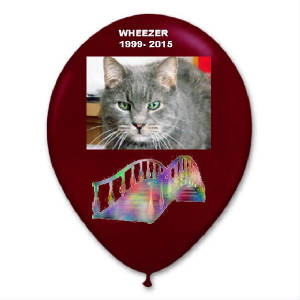 wheezersballoon.jpg
