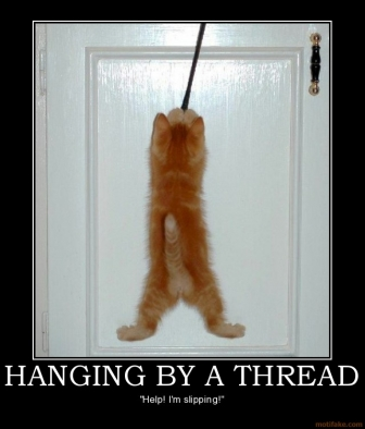 hanging-by-a-thread-kitten-demotivational-poster-1261169269.jpg